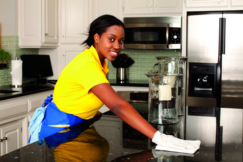 House Cleaning Services Central Maryland
